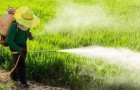 pesticides-spray-herbicide-735-350-722x350-400x193
